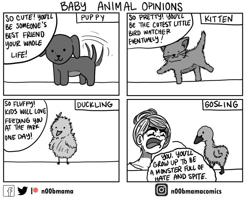baby animals.png